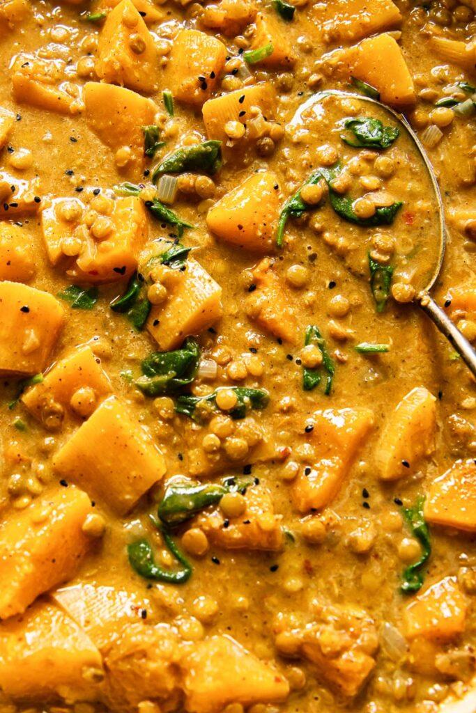 Close up of vegan coconut lentil curry