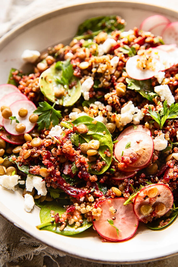 Side shot of quinoa salad with lentils and beets in white bowl